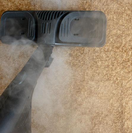 steam-carpet-bottom
